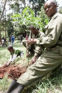 Kenyan Culture Class Tree Planting-28